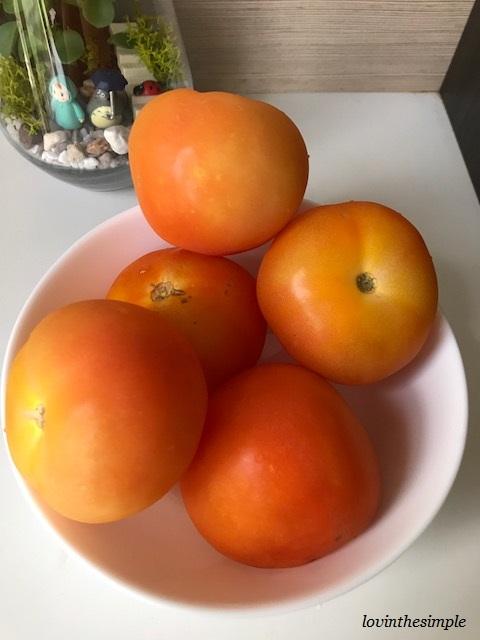 tomato puree4